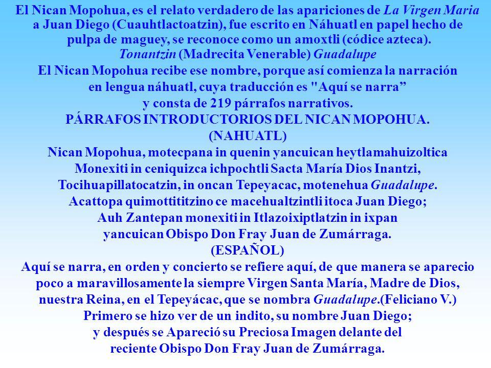 pulpa de maguey, se reconoce como un amoxtli (códice azteca).