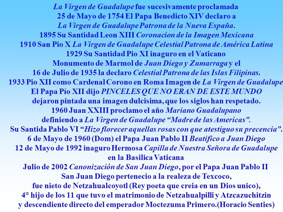 La Virgen de Guadalupe fue sucesivamente proclamada