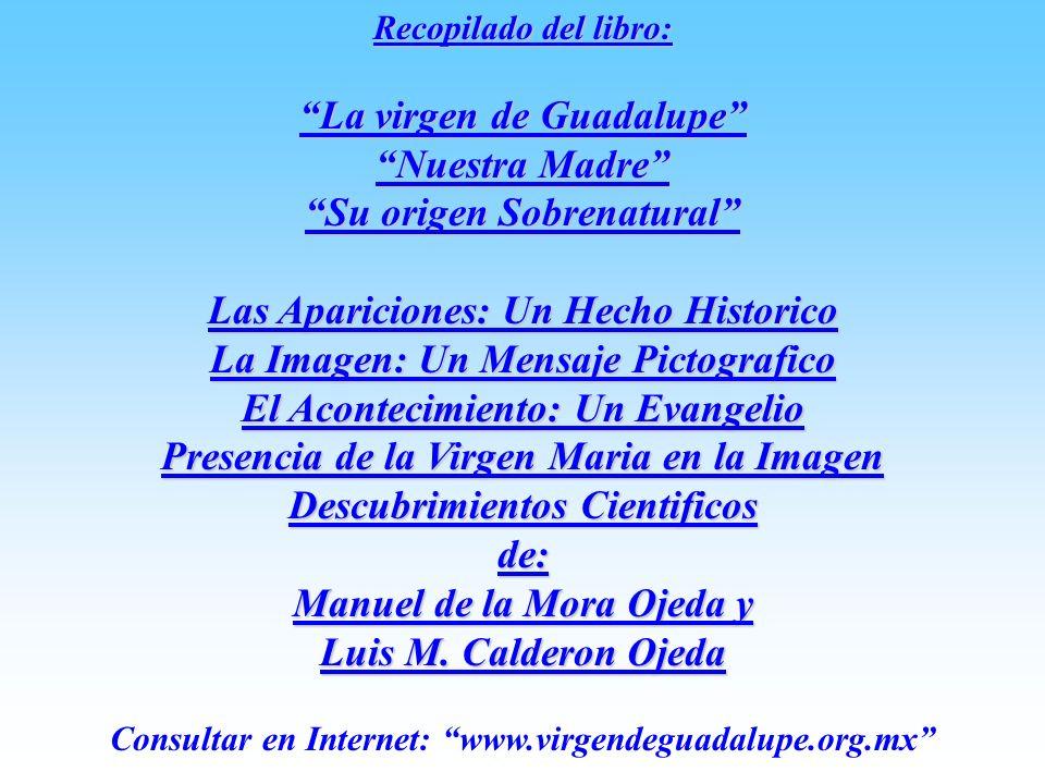 La virgen de Guadalupe Nuestra Madre Su origen Sobrenatural