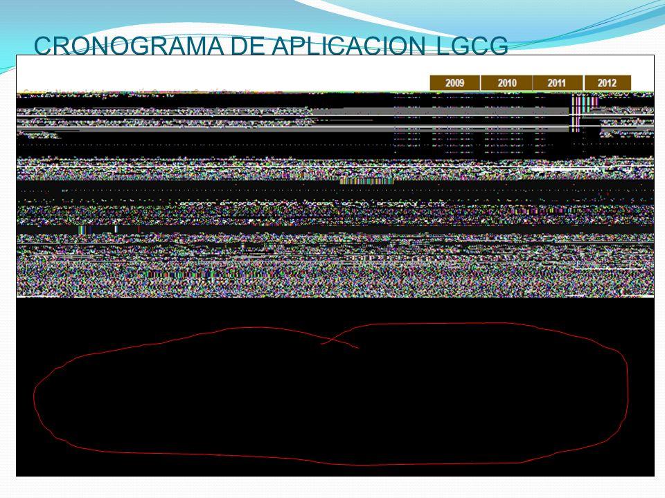 CRONOGRAMA DE APLICACION LGCG
