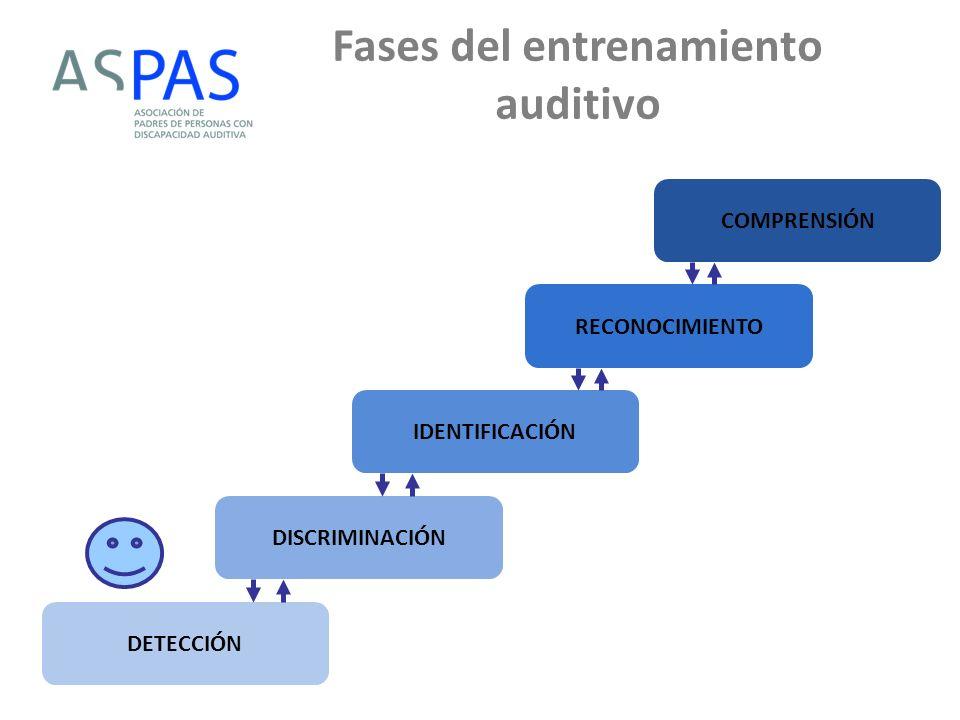 Fases del entrenamiento auditivo