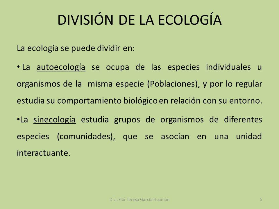 DIVISIÓN DE LA ECOLOGÍA