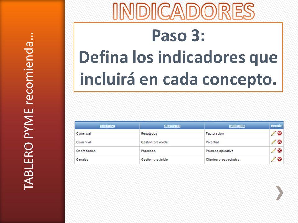 Defina los indicadores que incluirá en cada concepto.