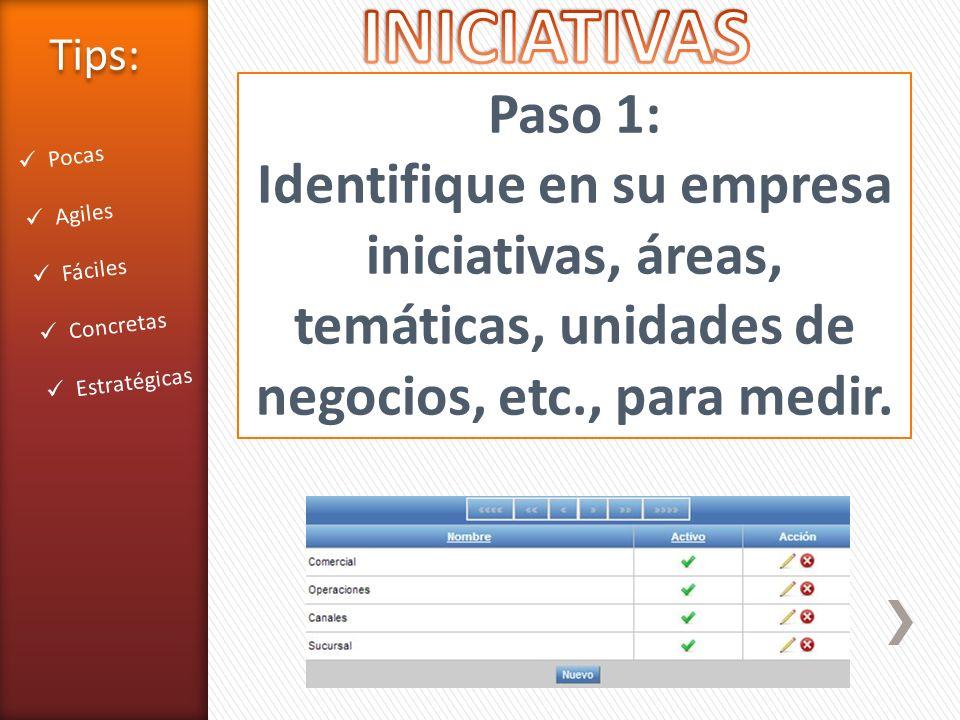 INICIATIVAS Tips: Paso 1: Identifique en su empresa iniciativas, áreas, temáticas, unidades de negocios, etc., para medir.