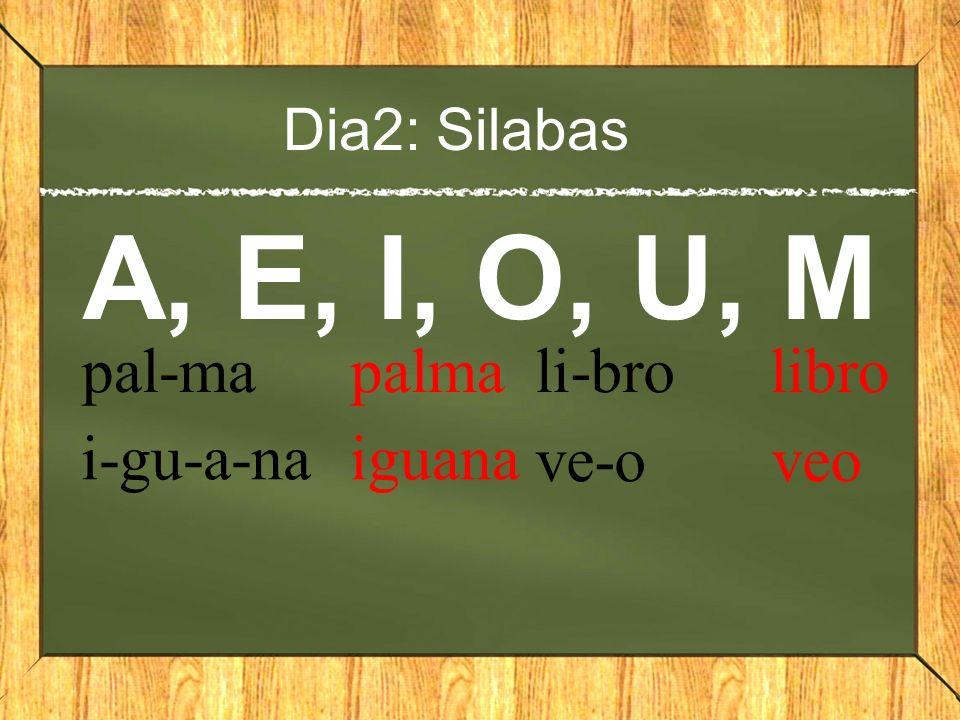A, E, I, O, U, M pal-ma palma li-bro libro i-gu-a-na iguana ve-o veo