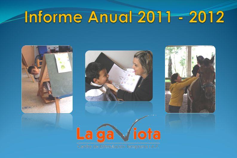 Informe Anual 2011 - 2012