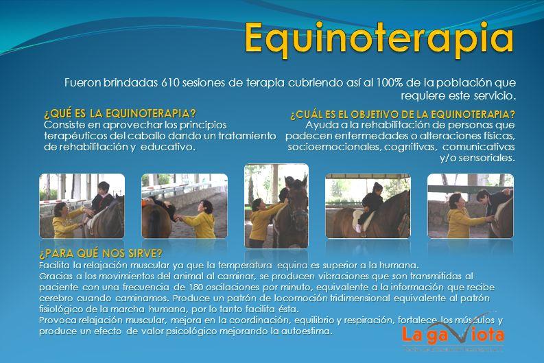 Equinoterapia Fueron brindadas 610 sesiones de terapia cubriendo así al 100% de la población que requiere este servicio.
