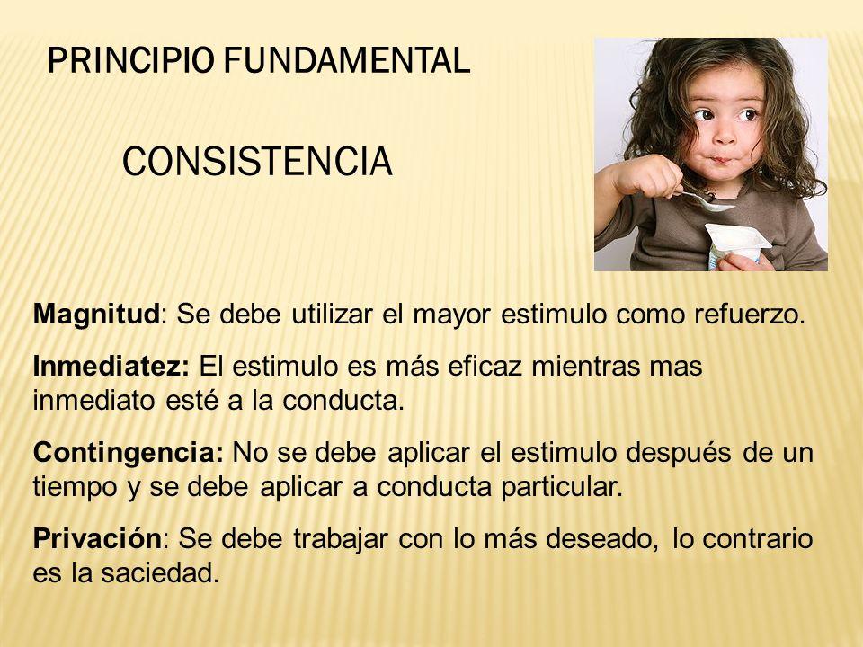 CONSISTENCIA PRINCIPIO FUNDAMENTAL