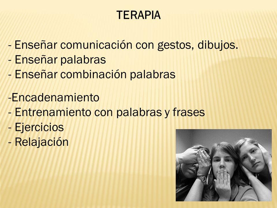 TERAPIA - Enseñar comunicación con gestos, dibujos. Enseñar palabras. Enseñar combinación palabras.