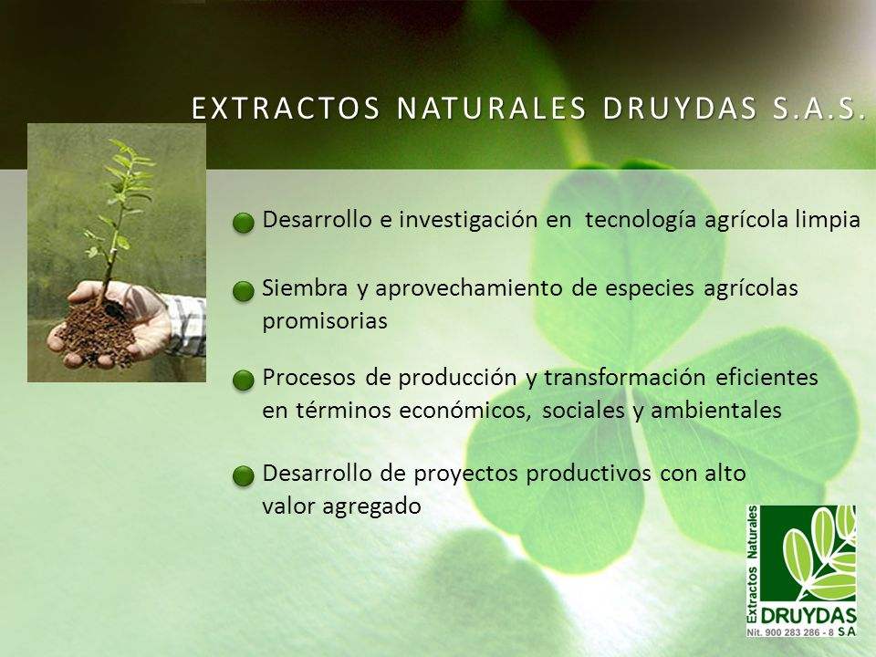 EXTRACTOS NATURALES DRUYDAS S.A.S.