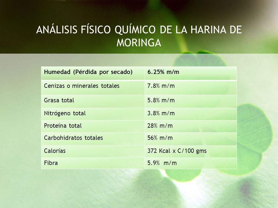 ANÁLISIS FÍSICO QUÍMICO DE LA HARINA DE MORINGA