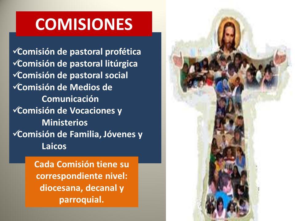 COMISIONES Comisión de pastoral profética