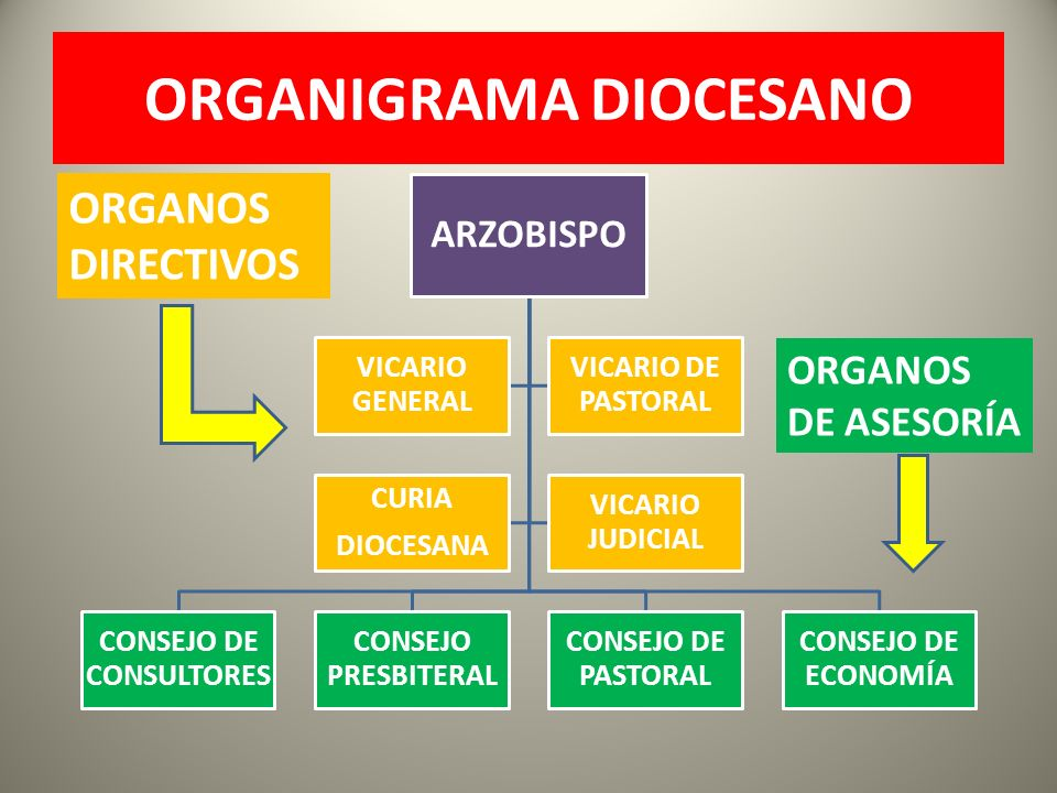 ORGANIGRAMA DIOCESANO