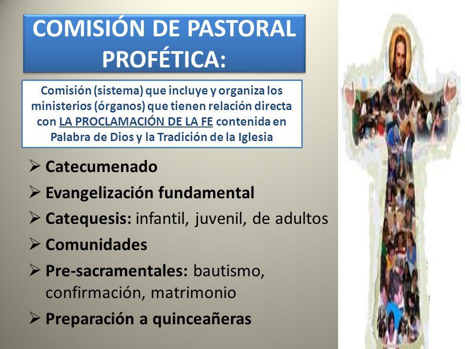 COMISIÓN DE PASTORAL PROFÉTICA: