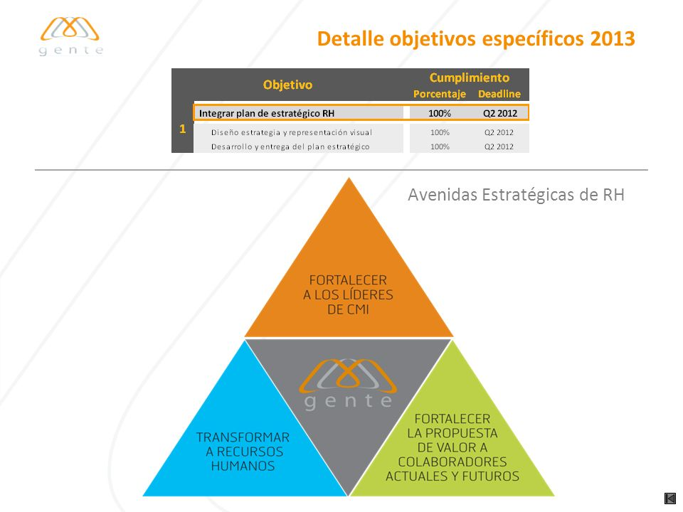Detalle objetivos específicos 2013