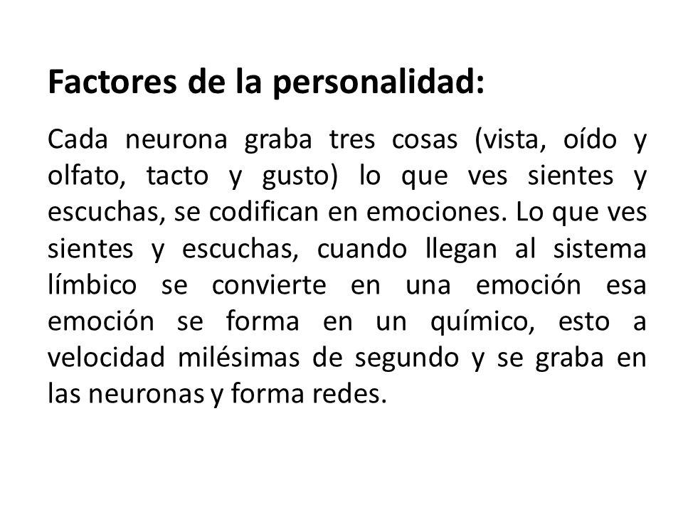 Factores de la personalidad: