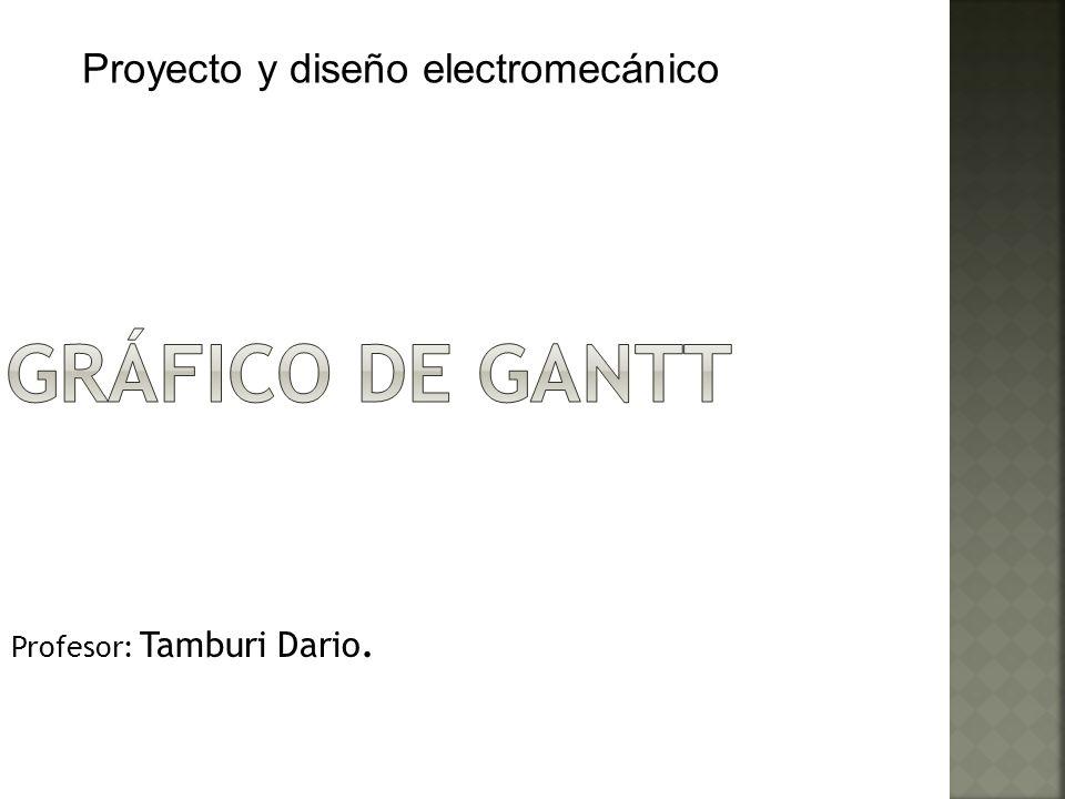 Profesor: Tamburi Dario.