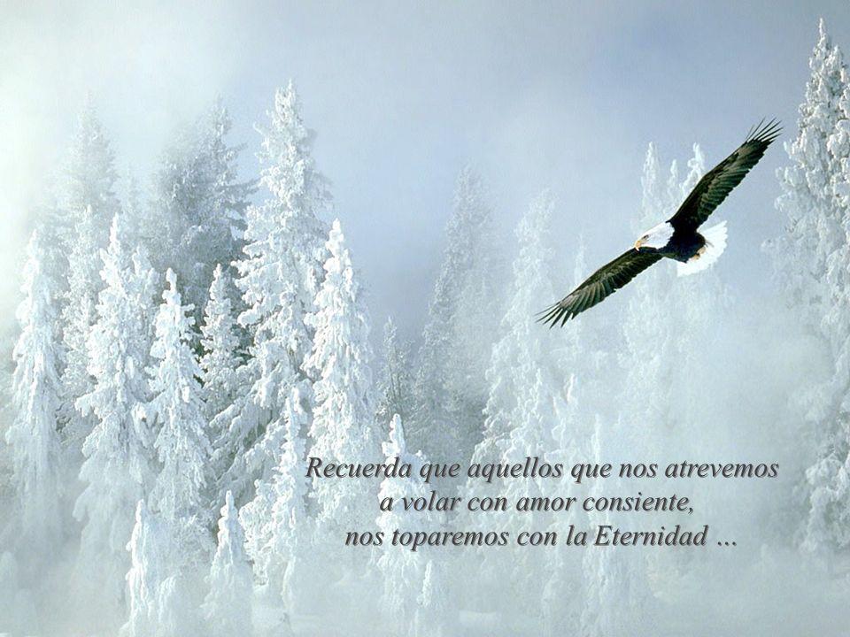 Recuerda que aquellos que nos atrevemos a volar con amor consiente,