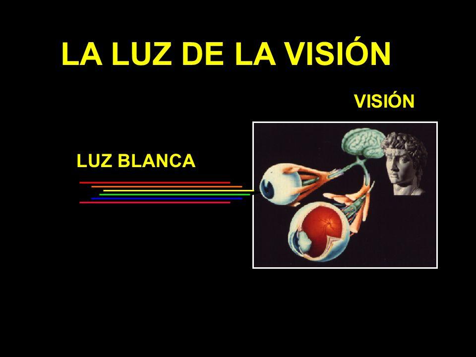 LA LUZ DE LA VISIÓN VISIÓN LUZ BLANCA