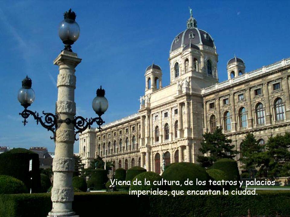Viena de la cultura, de los teatros y palacios