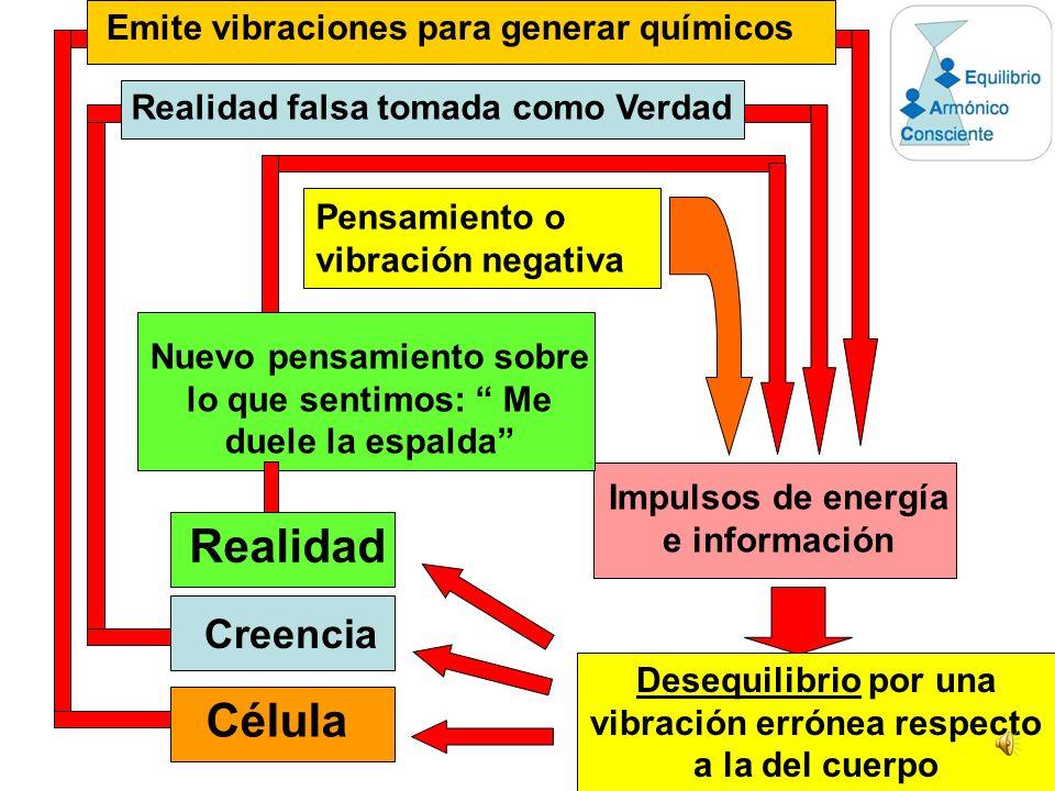 Realidad Célula Creencia Emite vibraciones para generar químicos