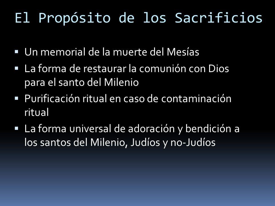 El Propósito de los Sacrificios