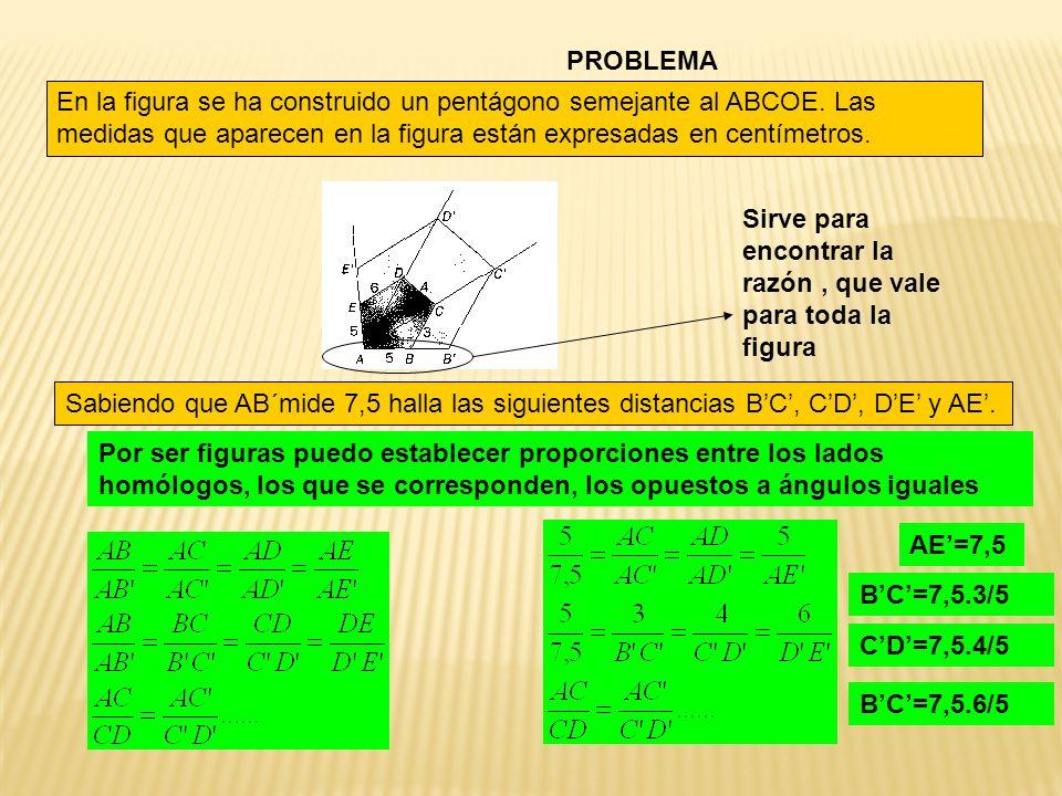 PROBLEMA En la figura se ha construido un pentágono semejante al ABCOE. Las medidas que aparecen en la figura están expresadas en centímetros.