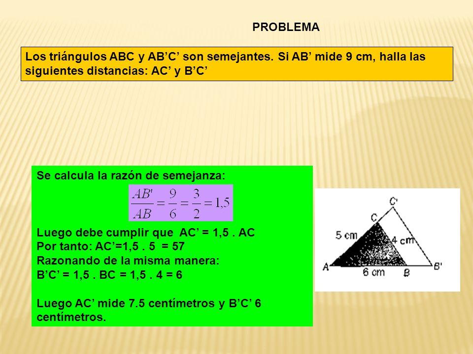 PROBLEMA Los triángulos ABC y AB'C' son semejantes. Si AB' mide 9 cm, halla las siguientes distancias: AC' y B'C'