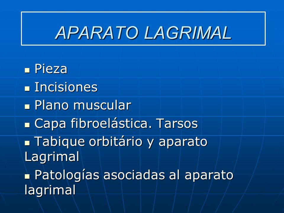 APARATO LAGRIMAL Pieza Incisiones Plano muscular