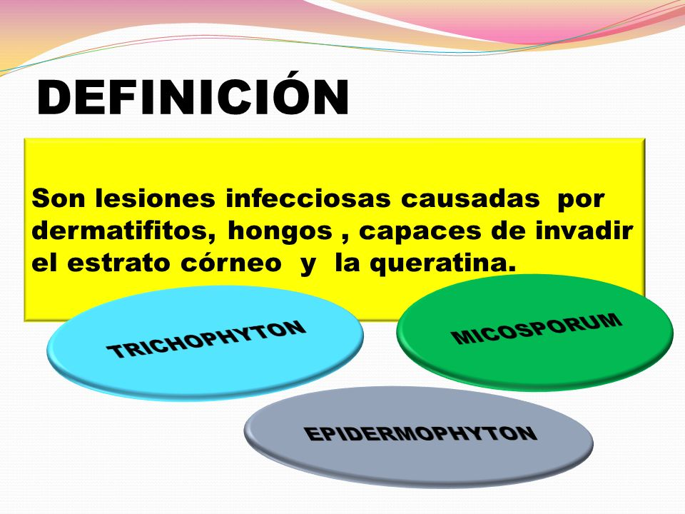 DEFINICIÓN Son lesiones infecciosas causadas por dermatifitos, hongos , capaces de invadir. el estrato córneo y la queratina.