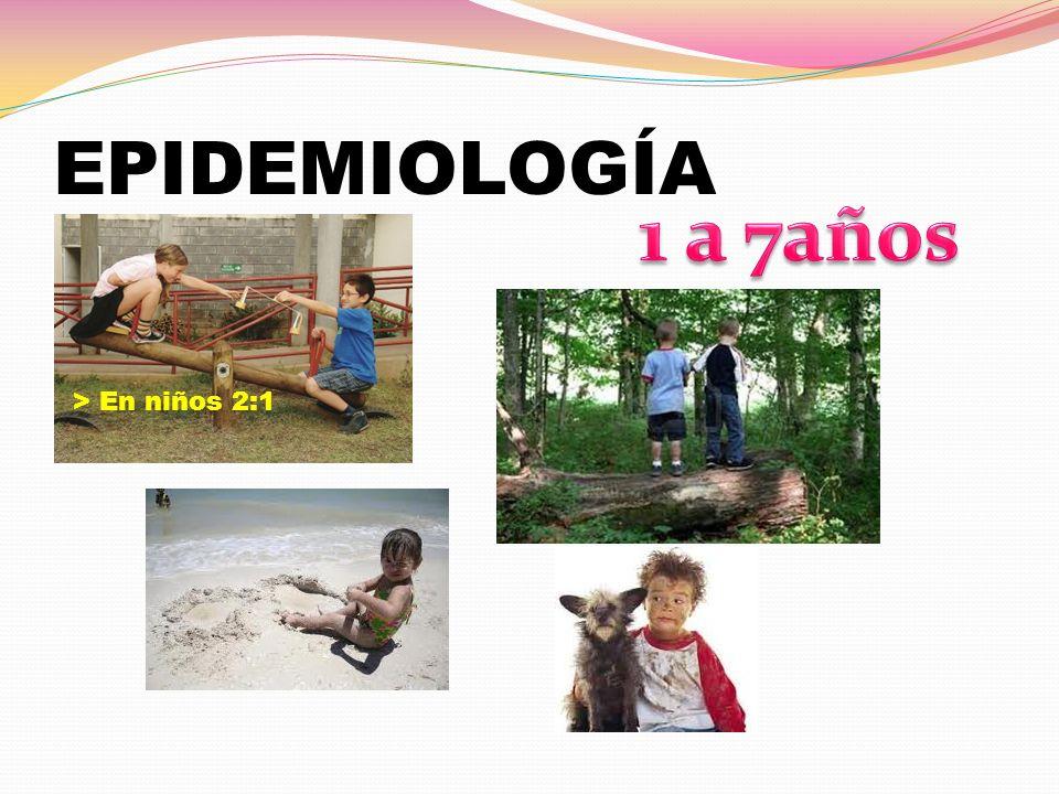 EPIDEMIOLOGÍA 1 a 7años > En niños 2:1