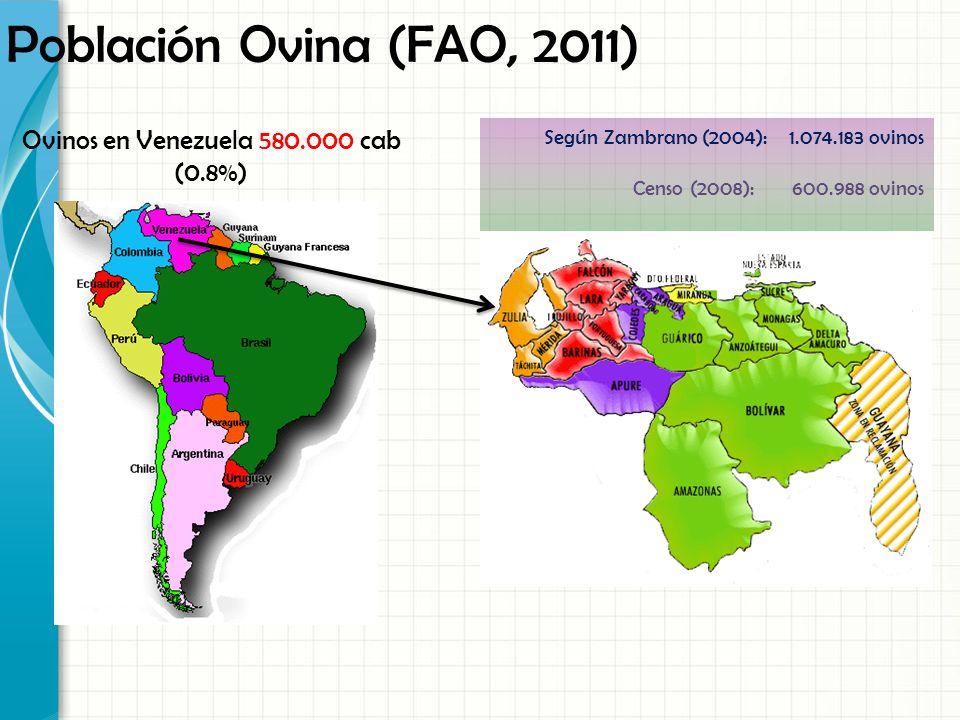 Ovinos en Venezuela 580.000 cab (0.8%)