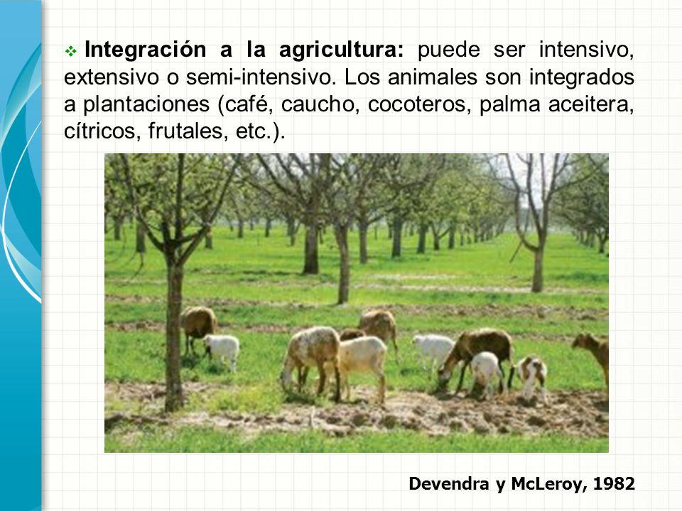 Integración a la agricultura: puede ser intensivo, extensivo o semi-intensivo. Los animales son integrados a plantaciones (café, caucho, cocoteros, palma aceitera, cítricos, frutales, etc.).