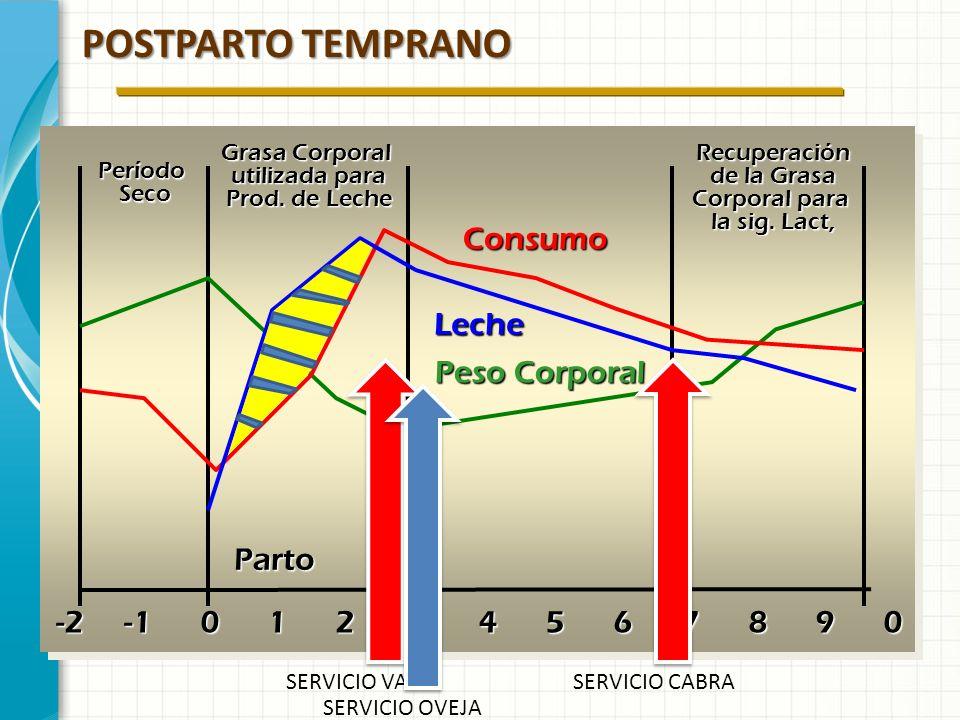 POSTPARTO TEMPRANO Consumo Leche Peso Corporal Parto