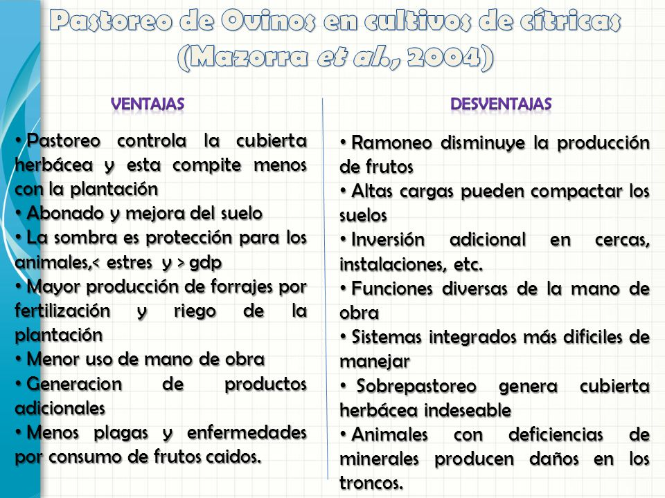 Pastoreo de Ovinos en cultivos de cítricas (Mazorra et al., 2004)