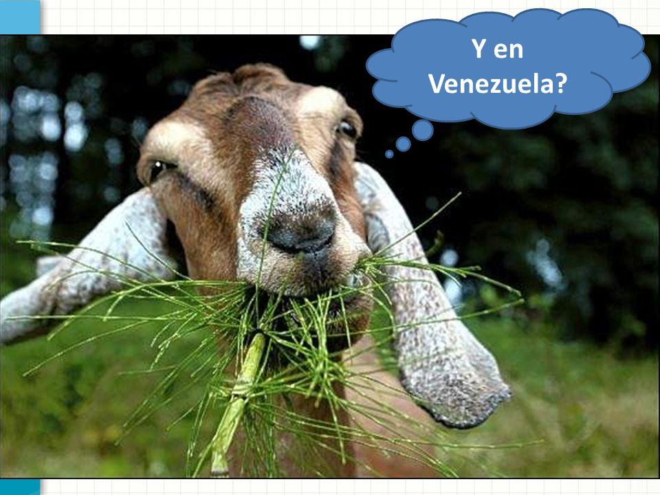 Y en Venezuela