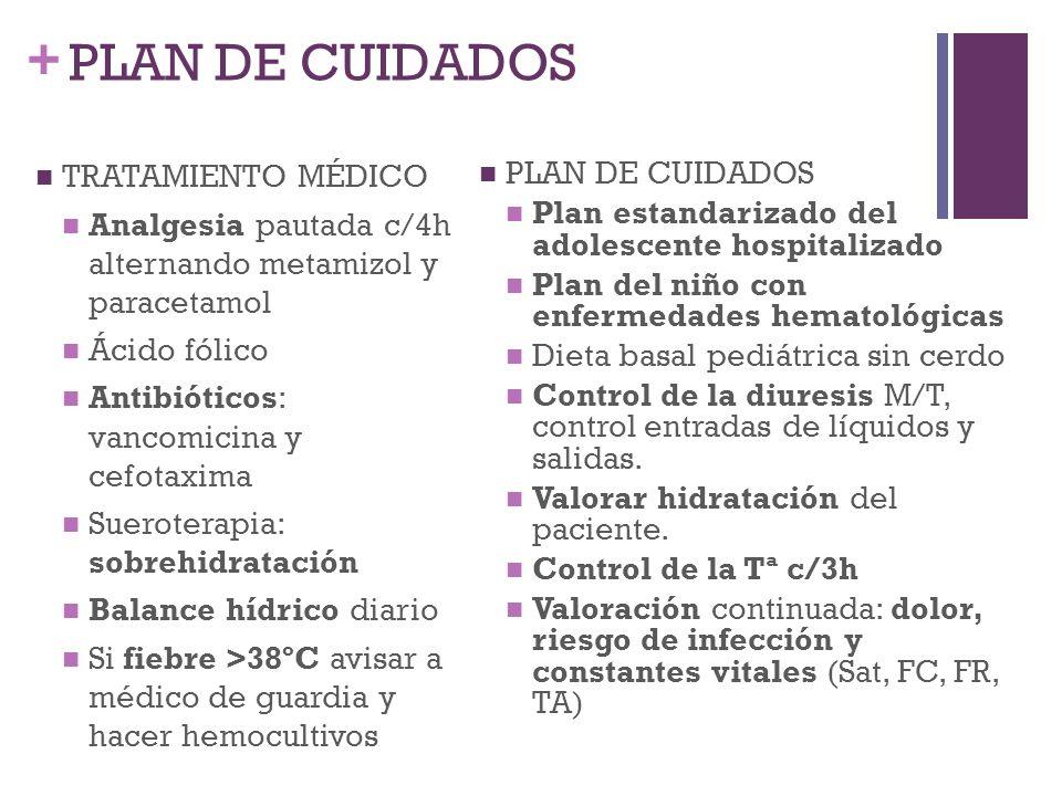 PLAN DE CUIDADOS TRATAMIENTO MÉDICO PLAN DE CUIDADOS