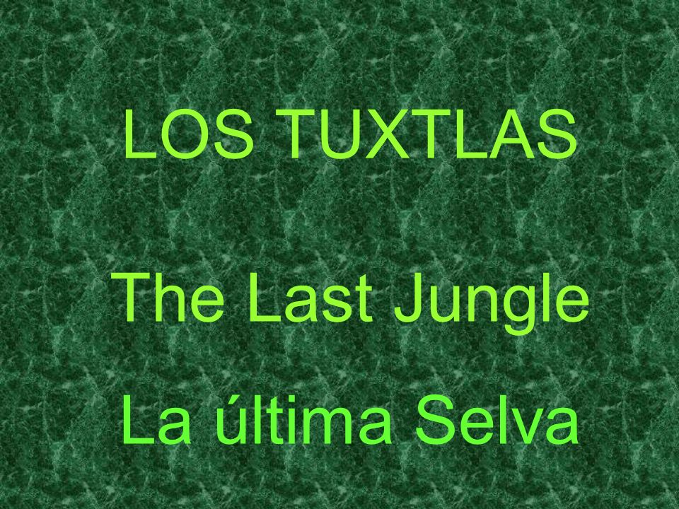 LOS TUXTLAS The Last Jungle La última Selva