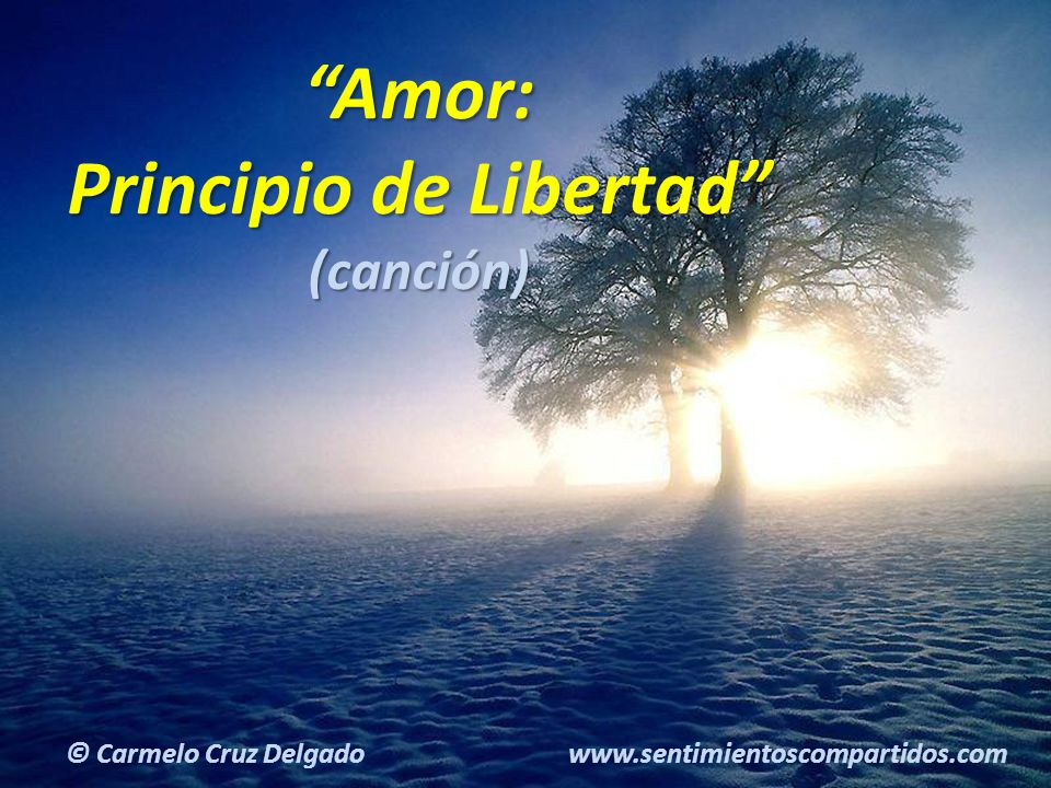 Amor: Principio de Libertad
