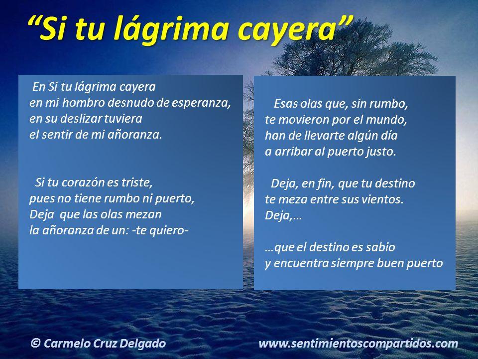 © Carmelo Cruz Delgado www.sentimientoscompartidos.com