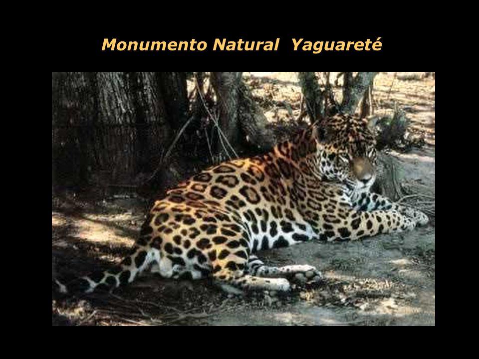 Monumento Natural Yaguareté