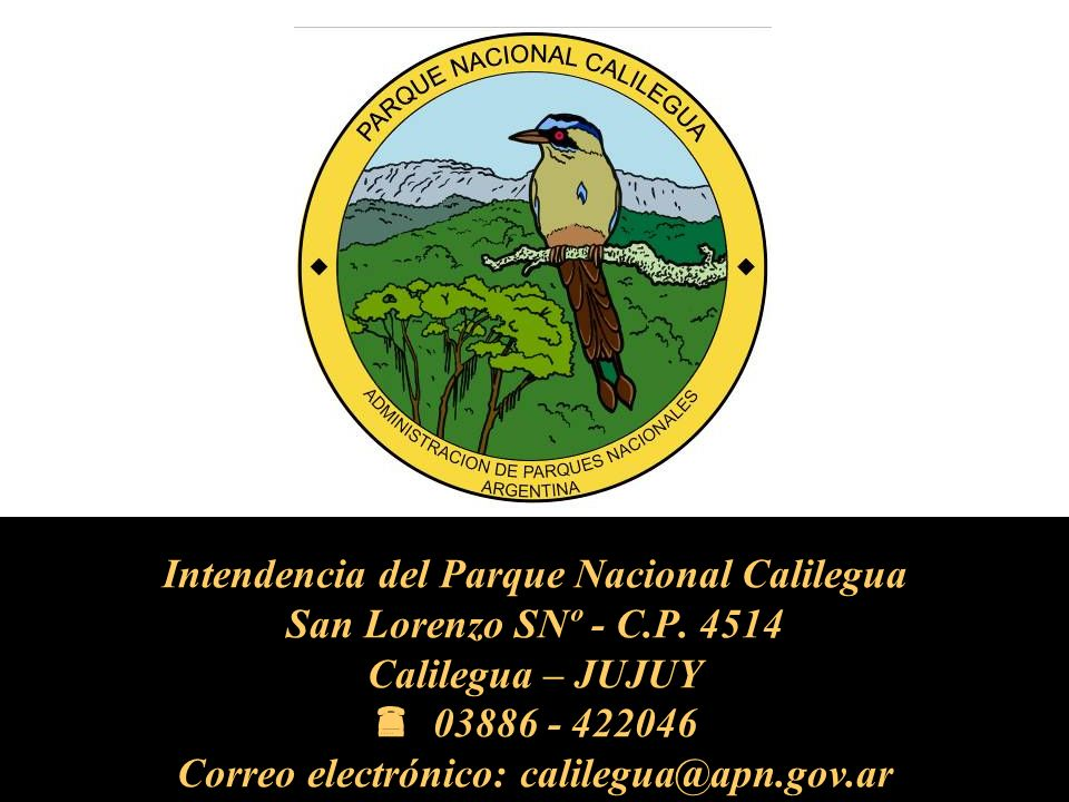 Intendencia del Parque Nacional Calilegua San Lorenzo SNº - C. P