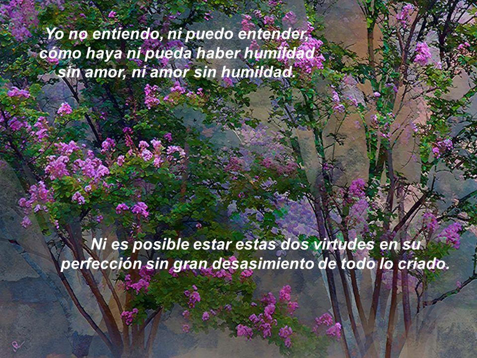 Yo no entiendo, ni puedo entender, cómo haya ni pueda haber humildad sin amor, ni amor sin humildad.