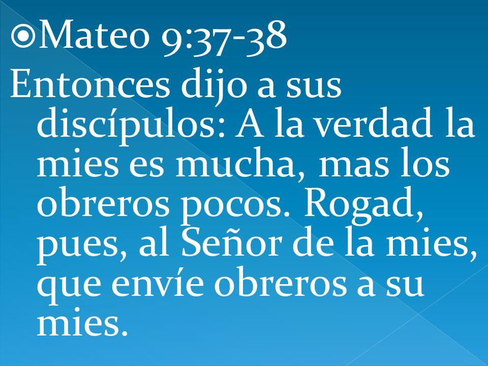 Mateo 9:37-38