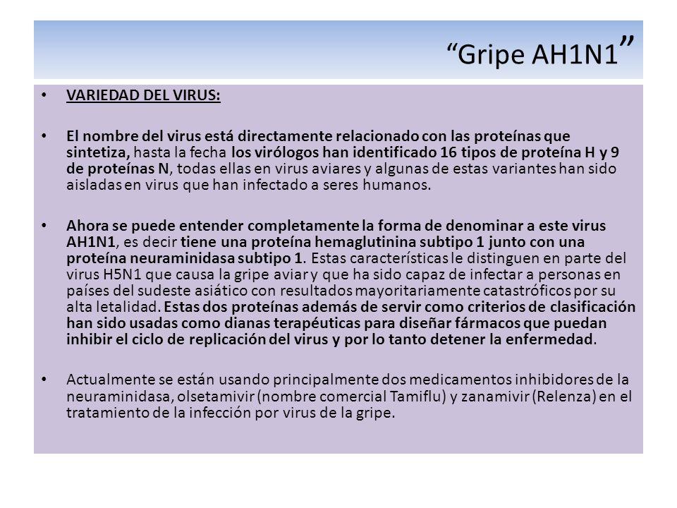 Gripe AH1N1 VARIEDAD DEL VIRUS:
