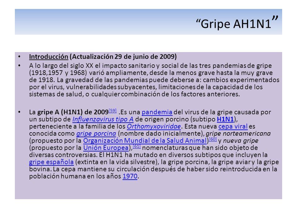 Gripe AH1N1 Introducción (Actualización 29 de junio de 2009)