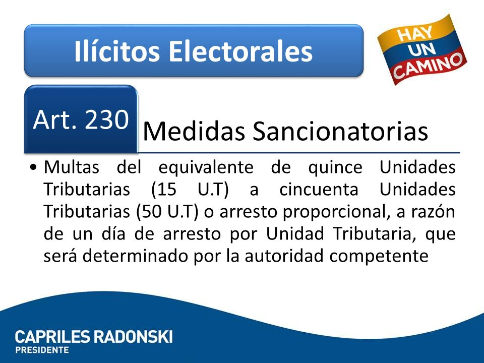 Ilícitos Electorales Art. 230 Medidas Sancionatorias