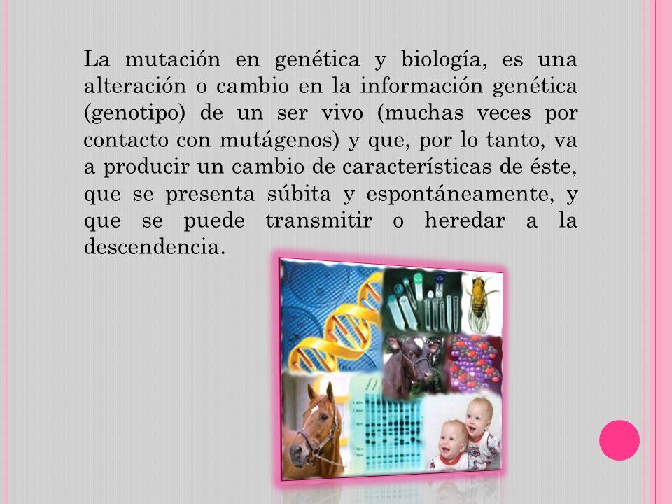 La mutación en genética y biología, es una alteración o cambio en la información genética (genotipo) de un ser vivo (muchas veces por contacto con mutágenos) y que, por lo tanto, va a producir un cambio de características de éste, que se presenta súbita y espontáneamente, y que se puede transmitir o heredar a la descendencia.