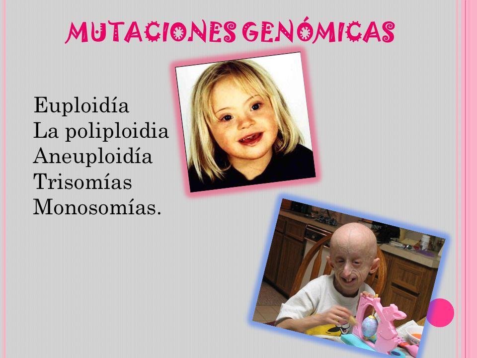 MUTACIONES GENÓMICAS La poliploidia Aneuploidía Trisomías Monosomías.
