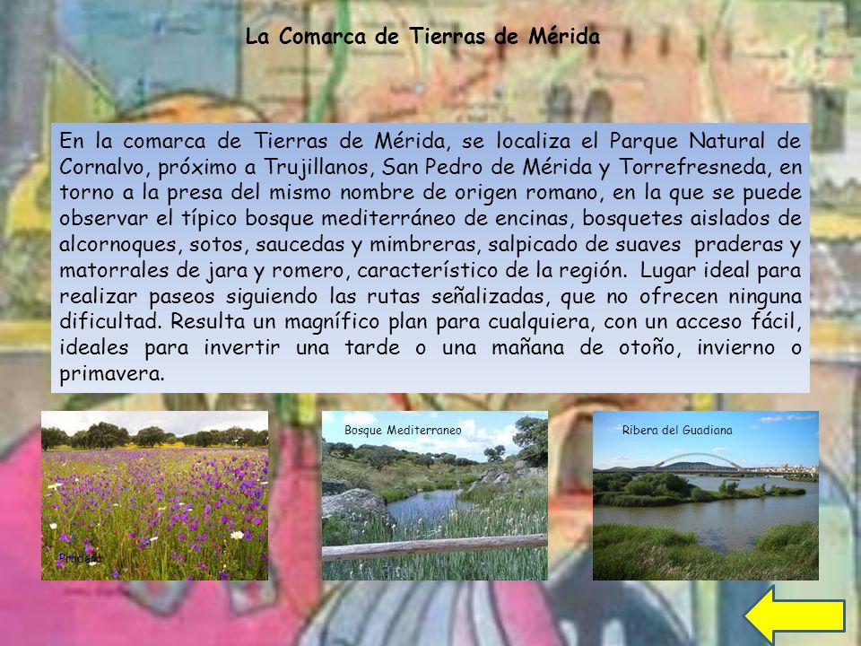 La Comarca de Tierras de Mérida